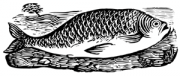 image: Fish woodcut